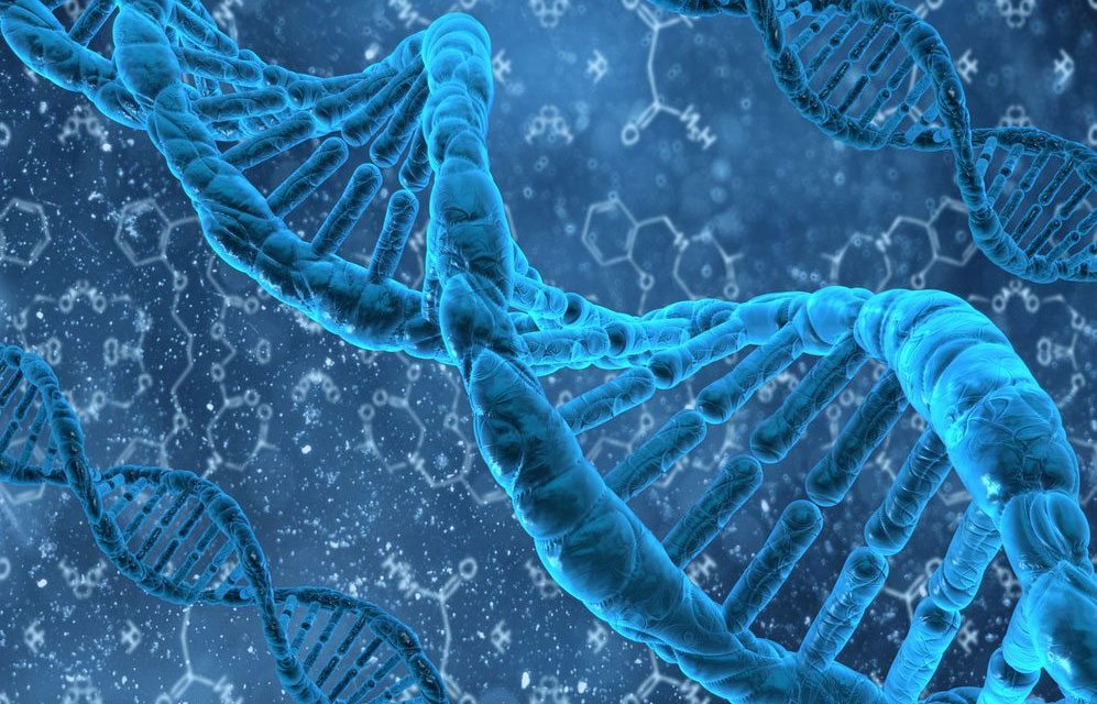 Nobel-Winning DNA Research Challenges Evolutionary Theory